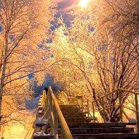 Настоящая зима у нас в Мурманске. :: Анна Приходько