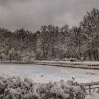 Заснеженный пруд в парке Сокольники. :: Василий Ярославцев