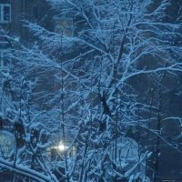 Зима снежная :: Татьяна Юрасова