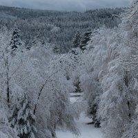 - а сегодня Зима.... :: Mariya laimite