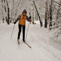 Скоро - финиш! Ближе, ближе... Помогите же, мне - лыжи!... :: Nataly St.