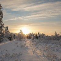 Мороз и солнце :: Олег Кулябин