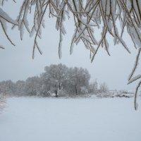 В объятиях настоящей зимы :: Ксения Соварцева