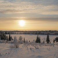 Зимняя полянка :: Олег Кулябин