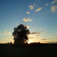 Vakaro akverelė / Evening  aquarelle :: silvestras gaiziunas