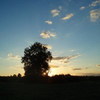 Vakaro akverelė / Evening  aquarelle :: silvestras gaiziunas gaiziunas