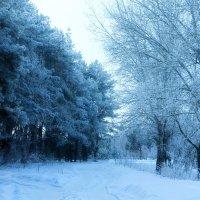 Морозно ! :: Валерий Хинаки