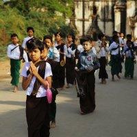 Бирманская детвора :: Владимир