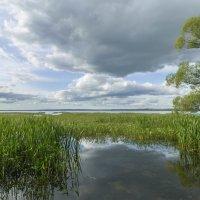 На Плещеевом озере :: Александра