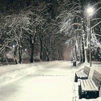 Ночной парк :: Денис Масленников