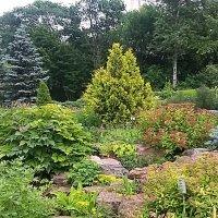 Летний сад :: elena