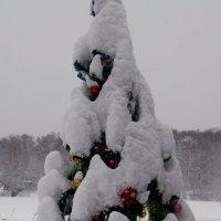 Фантазия на тему зимы :: Олег Пучков