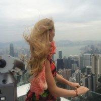 Гонконг :: Tata Wolf