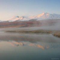 Туманное утро :: Дмитрий Сенотрусов