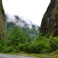Дороги Абхазии :: Roman