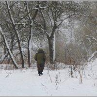 Уходящий в снежный туман. :: Роланд Дубровский