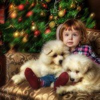 Новогодняя :: Ирина Жулина