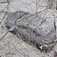 """Зря  он тебя  раскопал """"малышка""""! Праздник снега в  Москве уже начался ! :: Виталий Селиванов"""