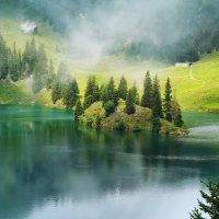 царство тумана :: Elena Wymann