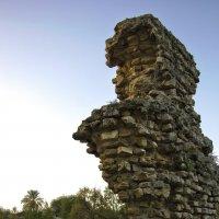 Часть стены города Ашкелона :: Ефим Журбин