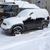 """""""под снежным одеялом"""" :: Александр Марусов"""
