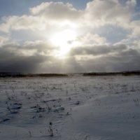 зимнее поле :: Денис Геранькин