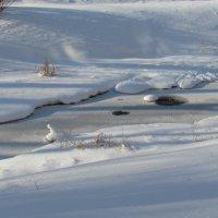 Замерзающий ручей :: Grey Bishop