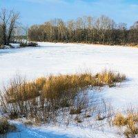 Замёрзшая река :: Любовь Потеряхина