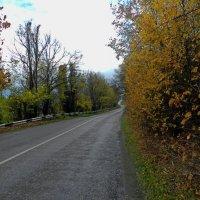 Осенняя дорога :: Валентин Семчишин