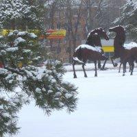 Донские скакуны зимой... :: Тамара (st.tamara)