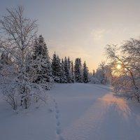 Луч солнца золотой.... :: Олег Кулябин