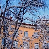 Необычный дом  (мобильное фото). :: Анна Приходько