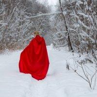 Красная шапочка в зимнем лесу :: Ольга (Кошкотень) Медведева