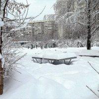 Спортивная площадка во дворе :: Светлана Лысенко