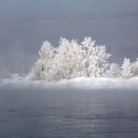Чудо природы. :: Андрей