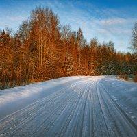 Зимняя дорога... :: Александр Никитинский