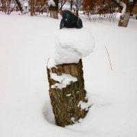 Замёрзший... :: Юрий Николаев