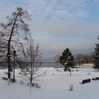 ...в декабре :: марина ковшова
