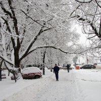 Улицы в снегу :: Руслан Гончар