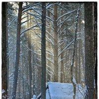 зимовье :: Евгений Фролов