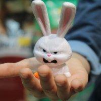 Злобный заяц :: Faina Popova