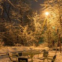 Зимние одинокие :: KotoPalych Gf
