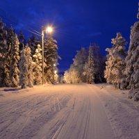 Зимняя ночь :: Александр Кокоулин