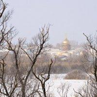 Вид на Никольский храм :: Вера Сафонова