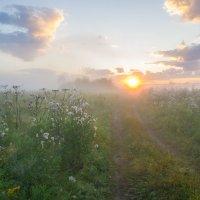 По дороге к Солнцу. :: Igor Andreev