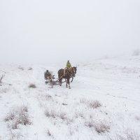 Зима в Крыму :: Анатолий Мигов