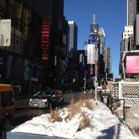 Однажды зимой  в  Нью  Йорке! :: Виталий Селиванов