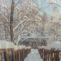 спуск к реке Истра :: Наталья Алексеева