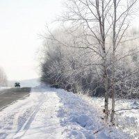 Утро морозное... :: Владимир Куликов