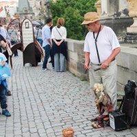 В Праге :: Светлана Белоусова